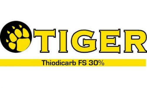 Tiguer