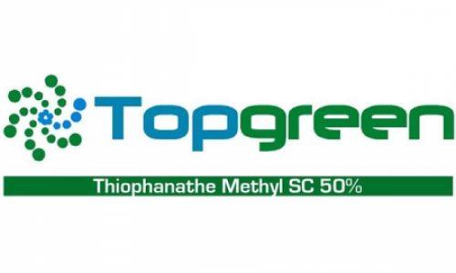 TopGreen